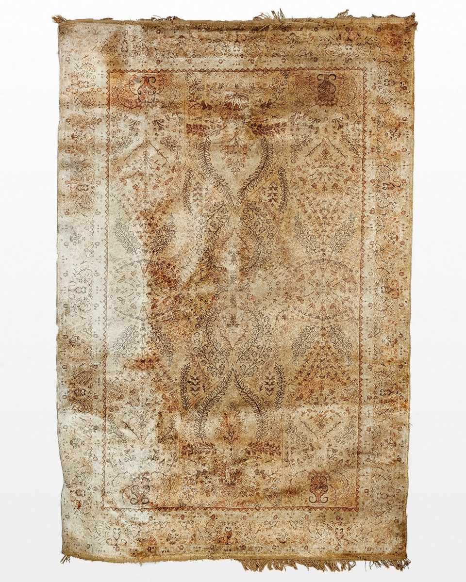 Front view of Setti 4.75' x 7' Distressed Rug
