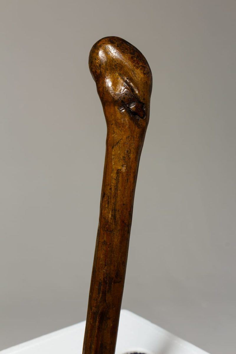 Alternate view 1 of Birk Cane