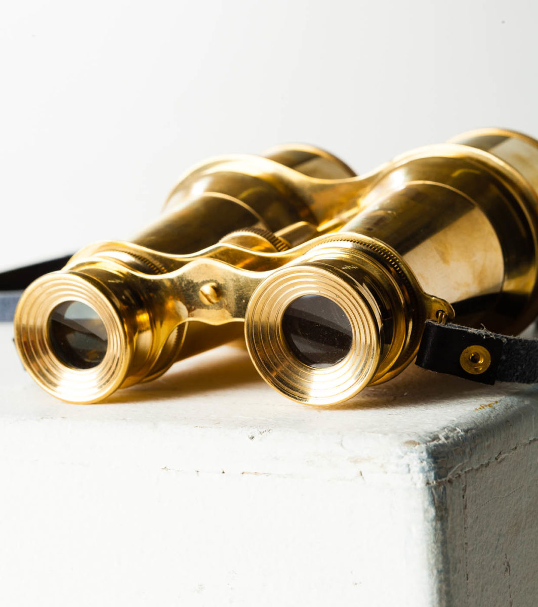 Alternate view 2 of Brass Binoculars
