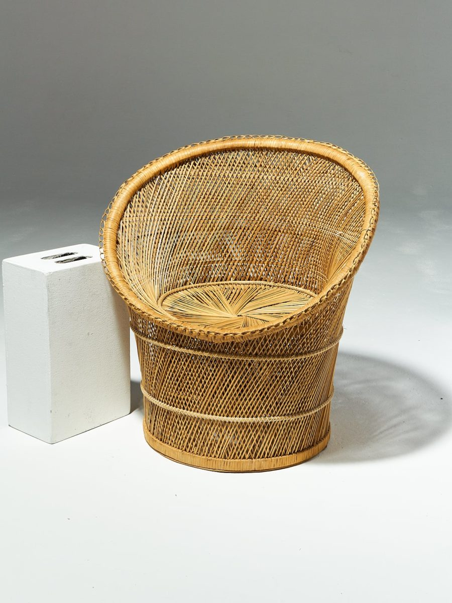 Alternate view 1 of Elly Rattan Chair