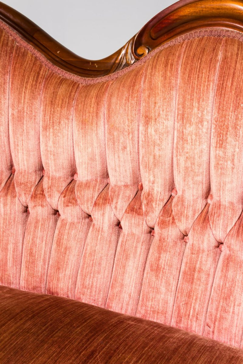 Alternate view 4 of Delores Coral Velvet Settee