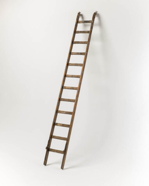 Front view of 10 Foot Braeburn Ladder