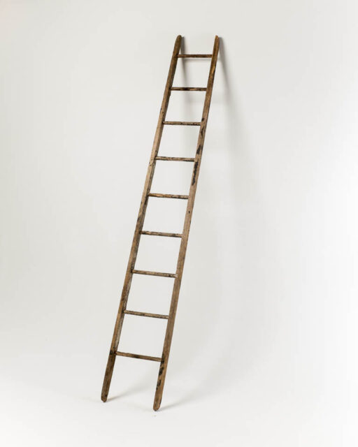 Front view of 10 Foot Macintosh Ladder
