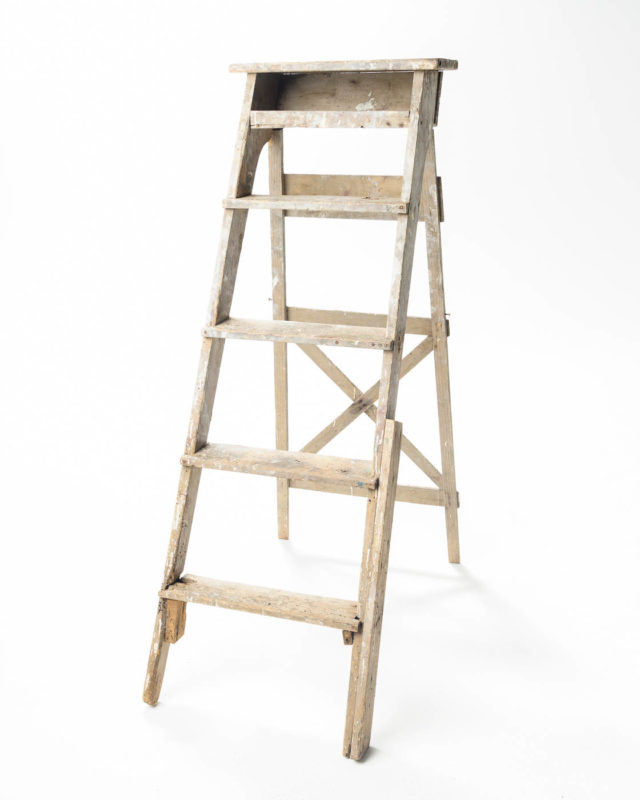Front view of 5 Foot Ren Ladder