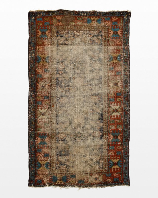 Front view of Badi 3.5' x 6' Rug