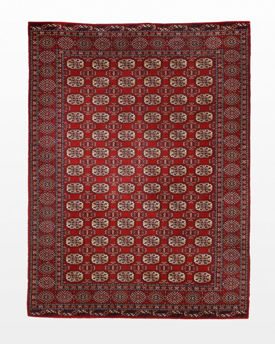 Front view of Asni 5.25' x 7.5' Rug