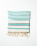 Front view thumbnail of Turquoise Line Throw