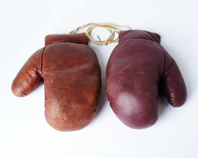 Alternate view 1 of Rockwell Vintage Boxing Gloves