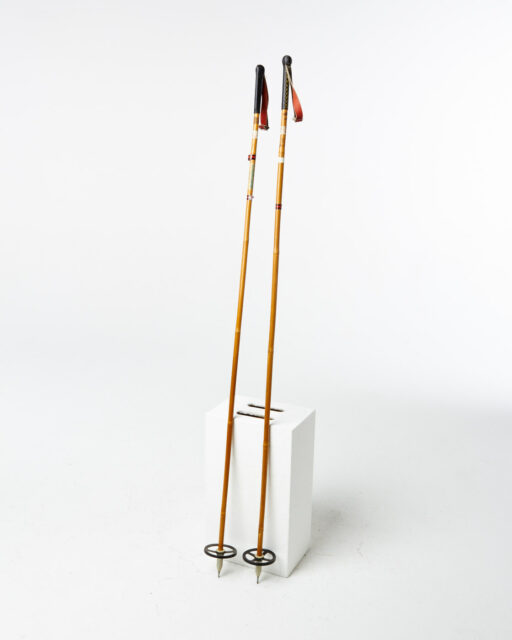 Front view of Erie 5 Foot Snowshoe Poles