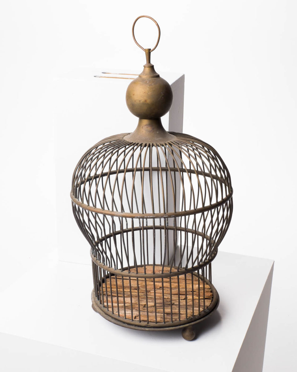 Front view of Bittern Birdcage