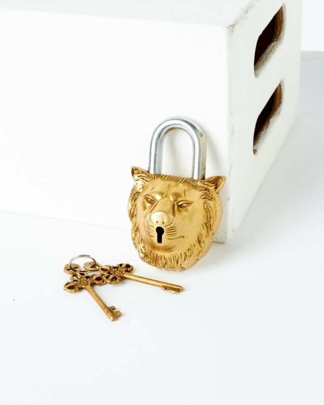Front view of Dean Lion Lock