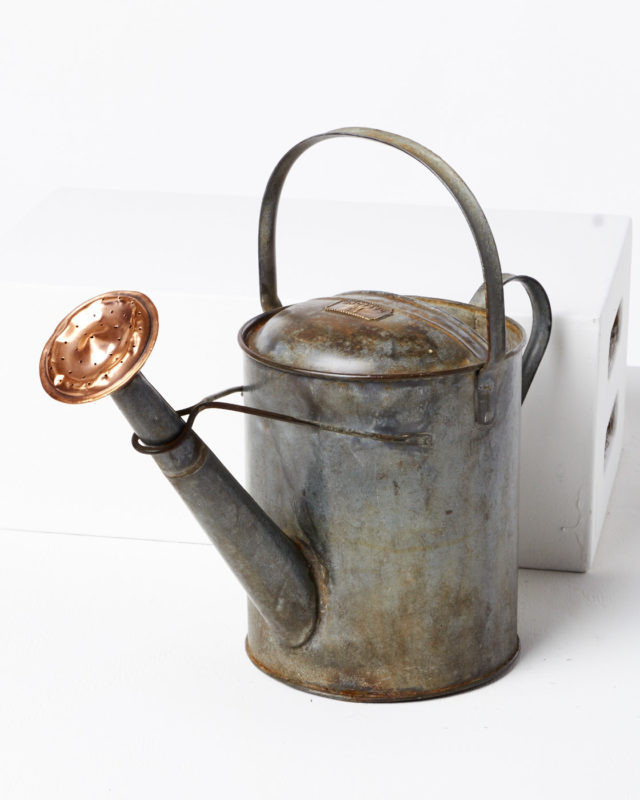 Front view of Darien Watering Can