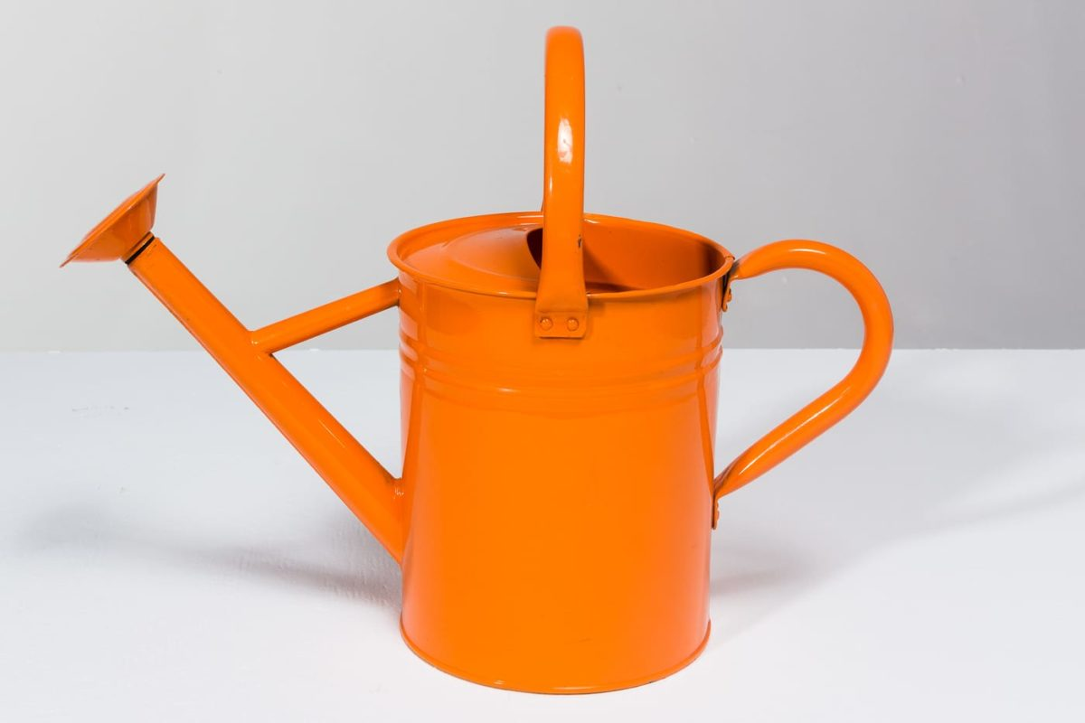 Alternate view 1 of Kane Watering Can