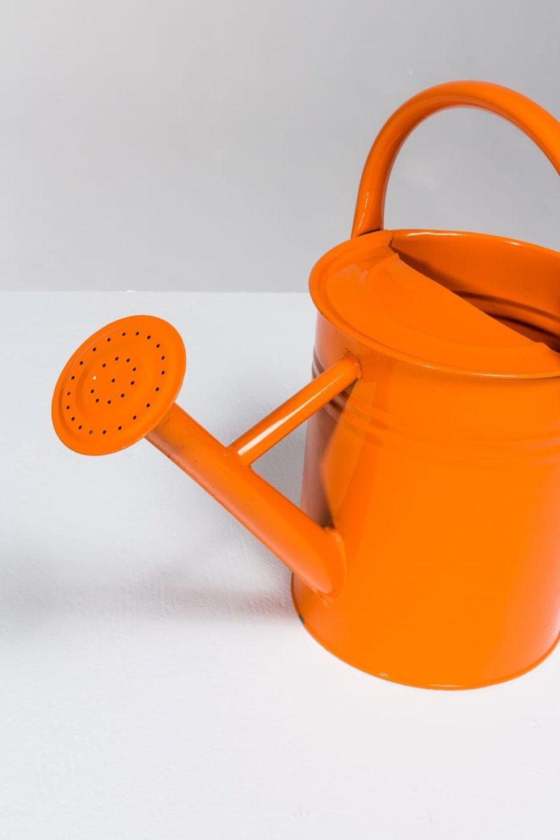 Alternate view 3 of Kane Watering Can