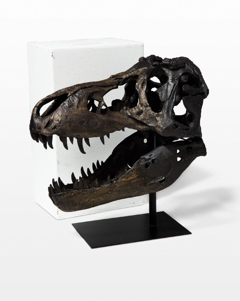 Ta192 Tex Tyrannosaurus Bust Prop Rental Acme Brooklyn