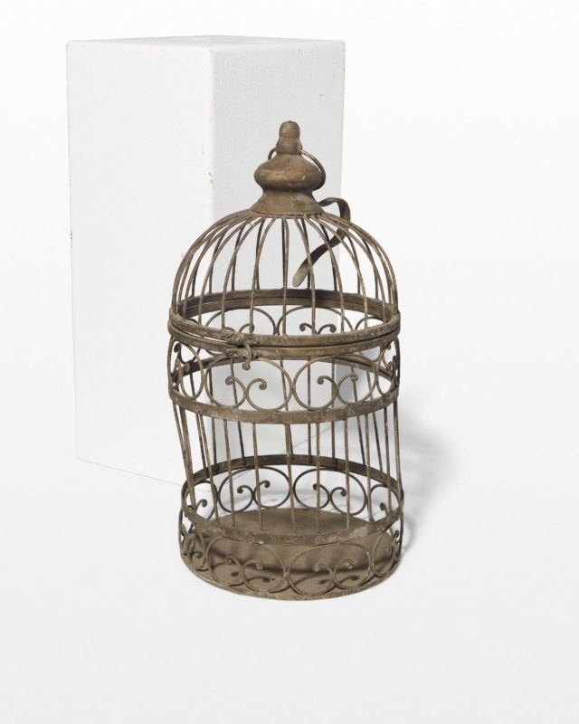 Front view of Gene Birdcage