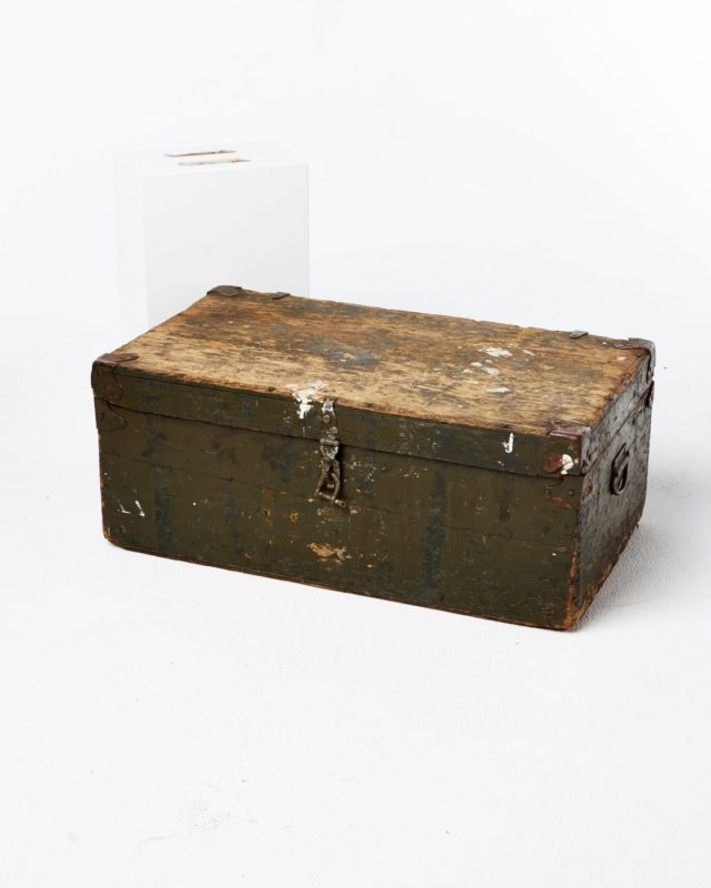 Front view of Monte Steerage Trunk