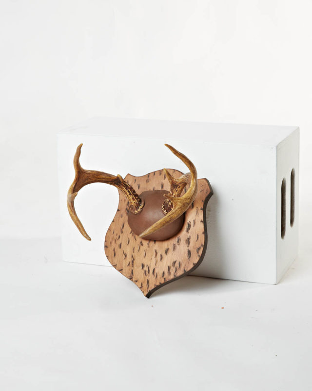 Front view of Antler Mount 1