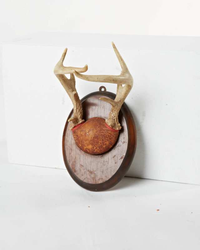 Front view of Antler Mount 3