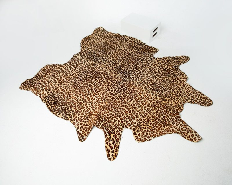 Front view of Cheetah Hide