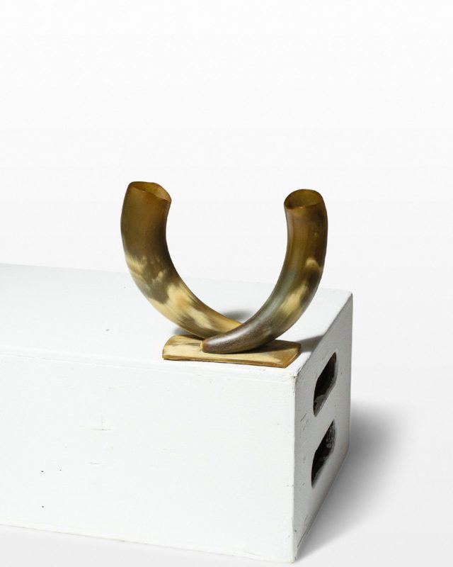 Front view of Stillman Horns