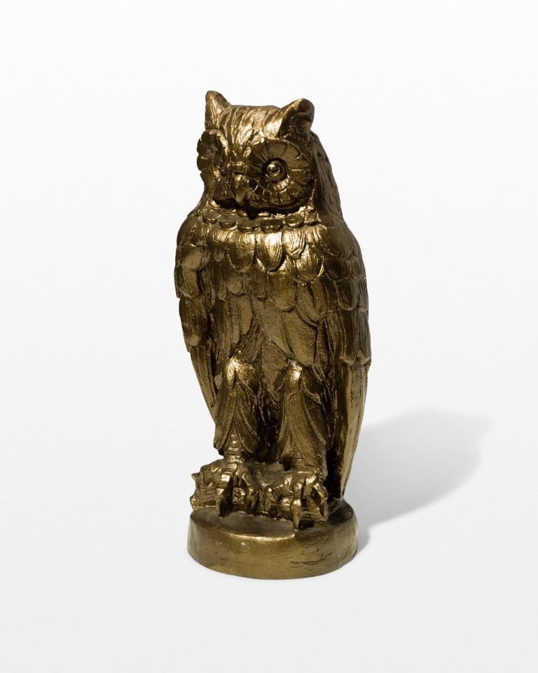 Front view of Wise Owl Statue