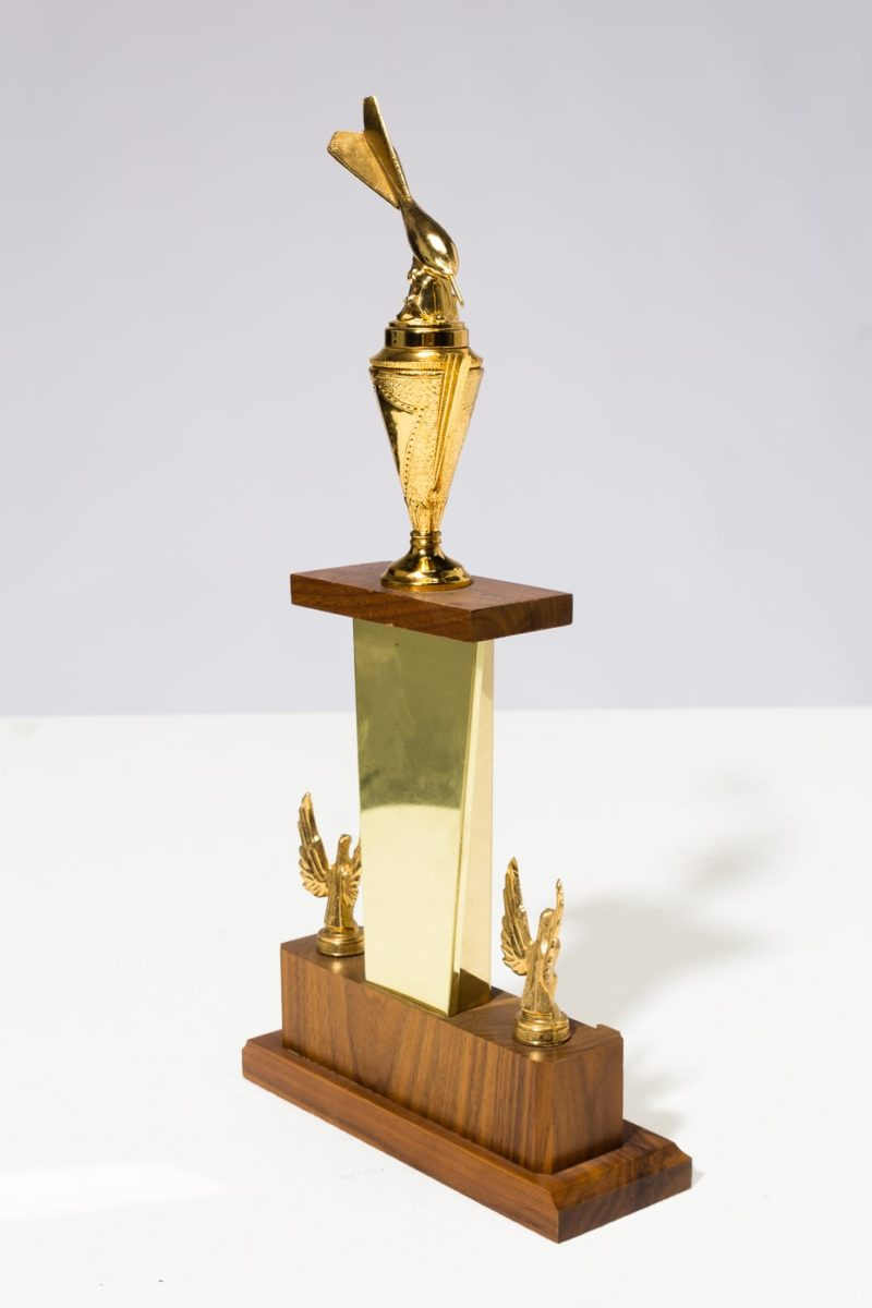 Alternate view 3 of Carson Trophy