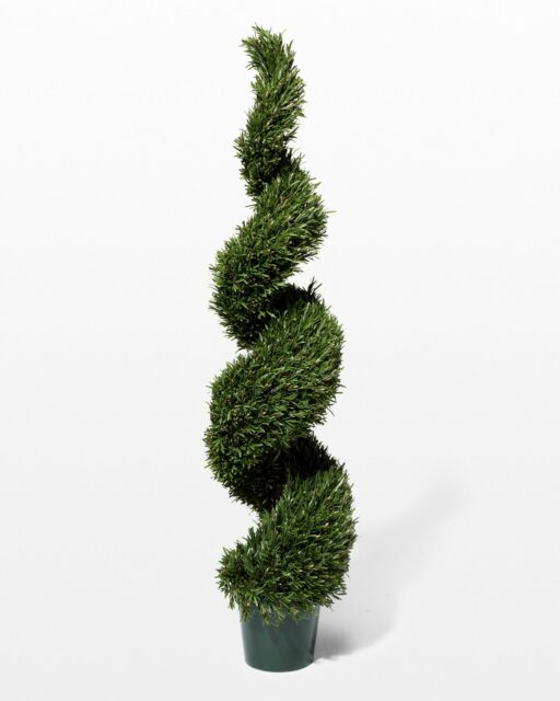 Front view of 5' Faux Rosemary Spiral Topiary Tree