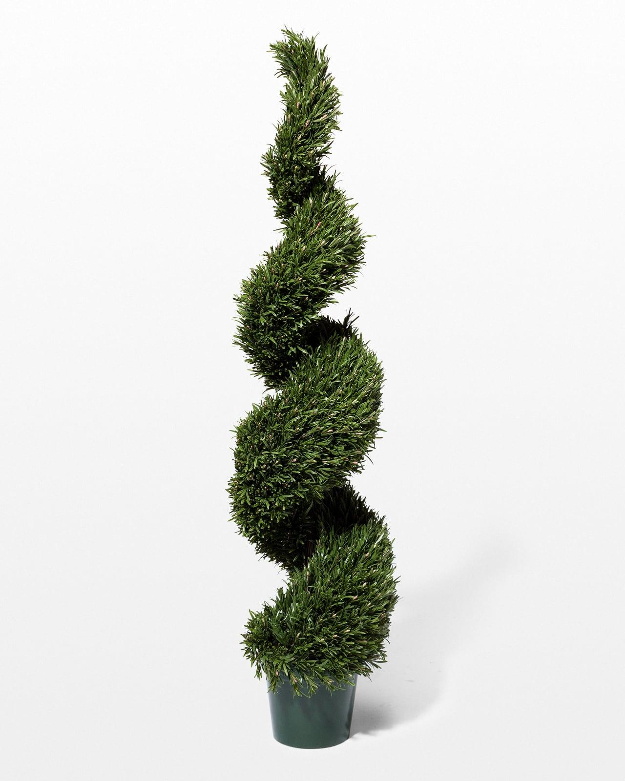 Fp002 5 Faux Rosemary Spiral Topiary Tree Prop Rental Acme Brooklyn