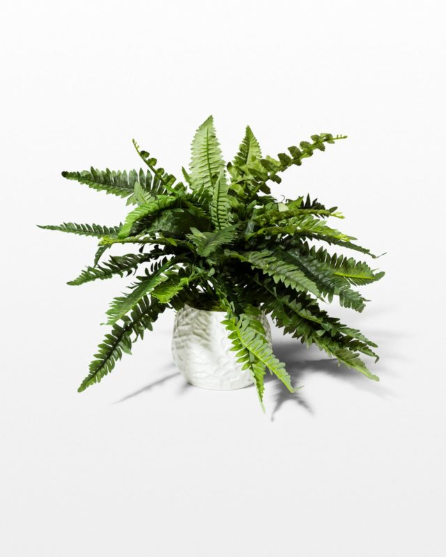 Front view of Reid Potted Faux Fern