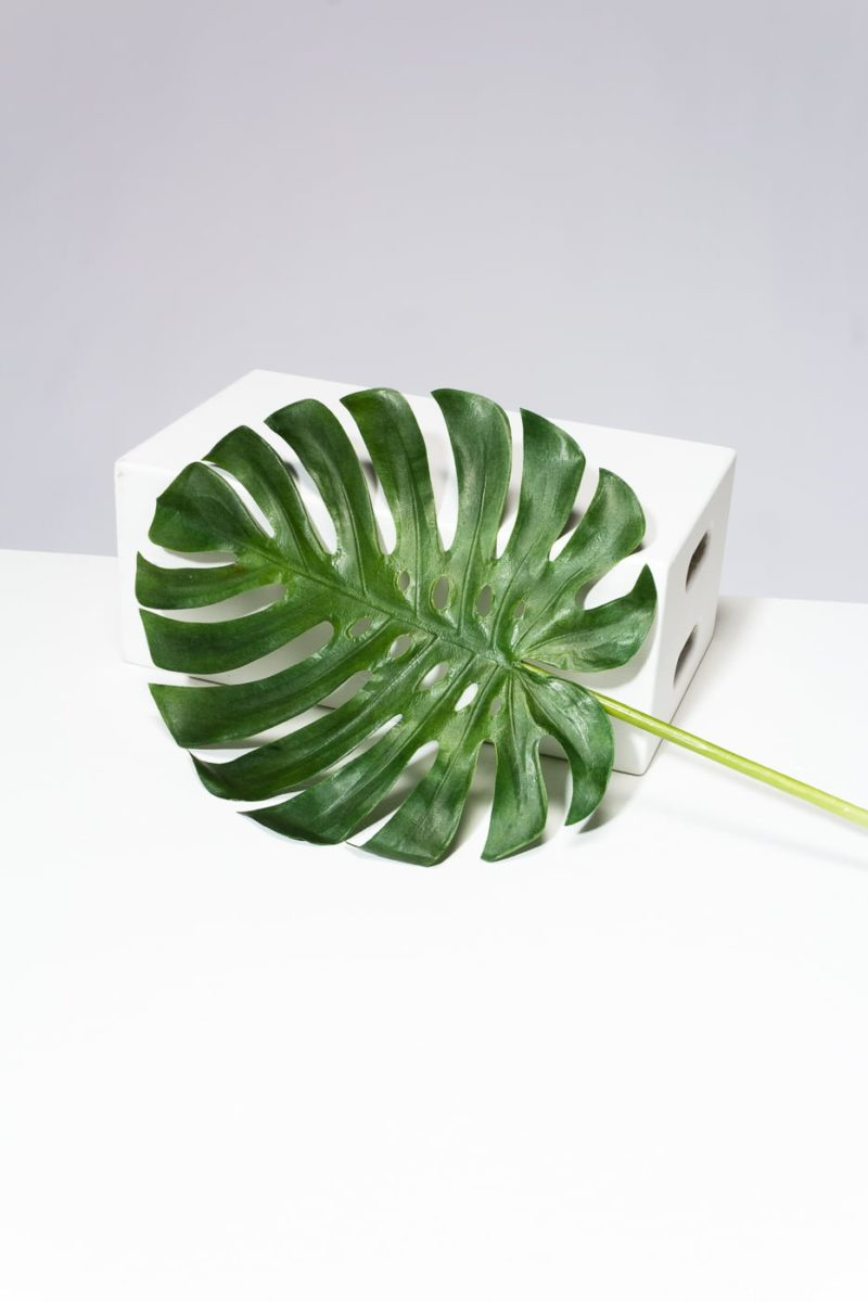 Alternate view 1 of Set of 4 Faux Monstera Leaves