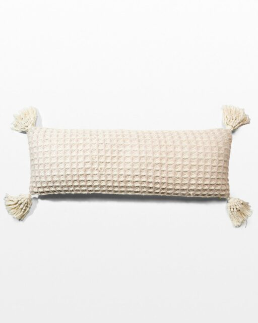 Front view of Feller Tassel Pillow
