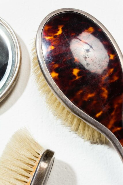 Alternate view 2 of Cicely Tortoise Shell Vanity Set