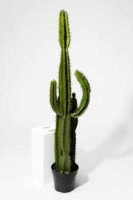 "Alternate view 2 of Mesa Faux 62"" Potted Saguaro Cactus"