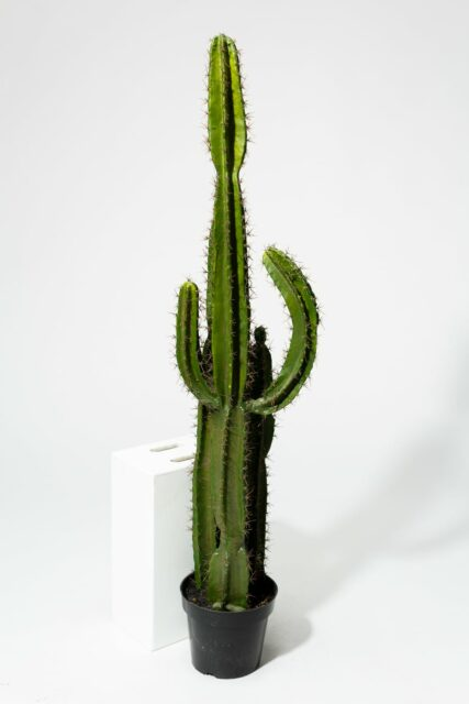 Alternate view 2 of Mesa Faux 62″ Inch Potted Saguaro Cactus