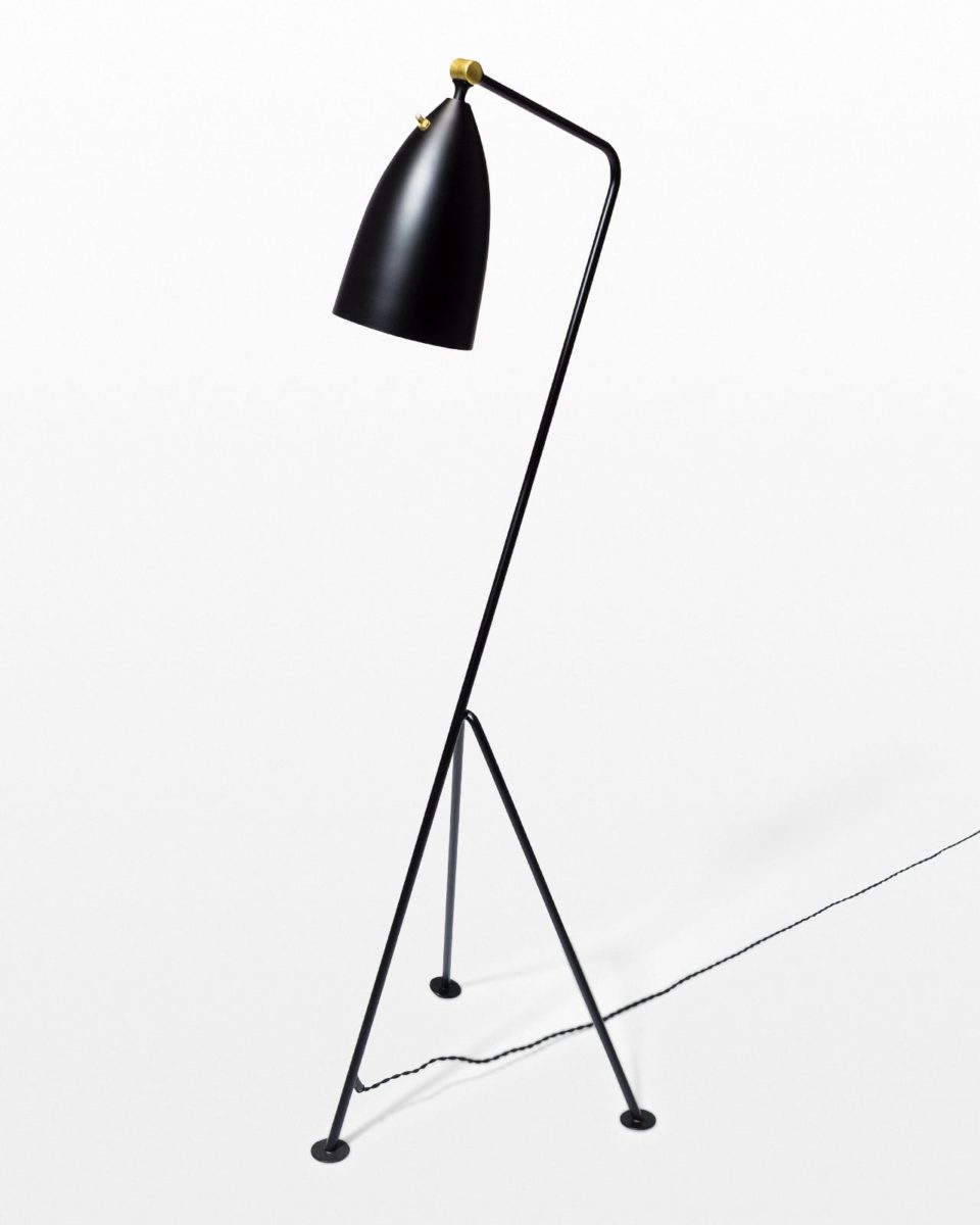 Front view of Spur Black Grasshopper Lamp