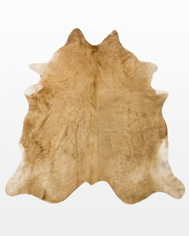 Front view of Loredo Fur Hide
