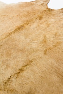 Alternate view 1 of Loredo Fur Hide