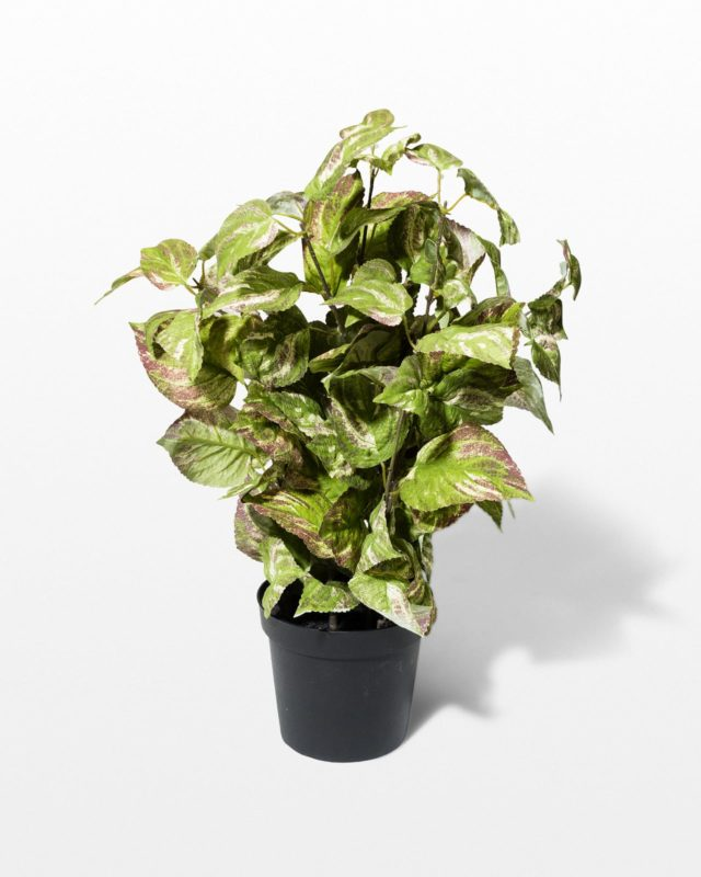 Front view of Dazzle Potted Faux Coleus Plant