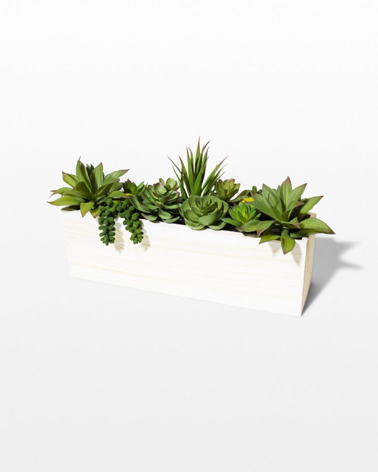 Front view of Asana Faux Succulent Window Box