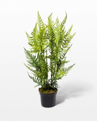 Front view of Yen Faux Potted Tree Fern