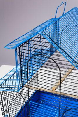 Alternate view 1 of Kang Blue Wire Birdcage