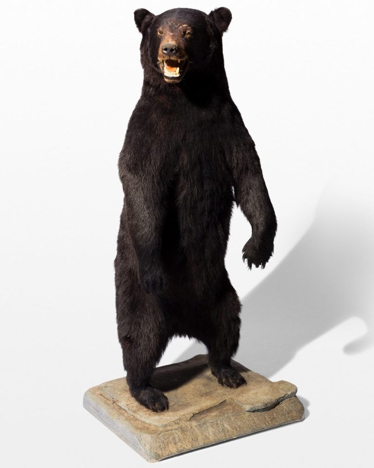 Front view of Oswald Standing Bear