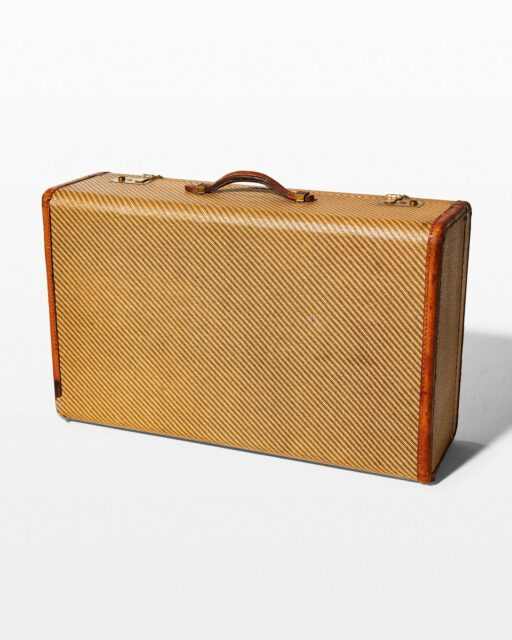 Front view of Romp Diagonal Stripe Suitcase