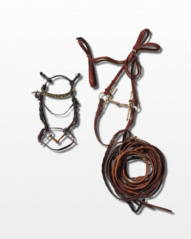 Front view of Lambert Horse Bridle Set