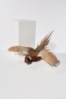 Alternate view 2 of Pheasant in Flight Wall Mount