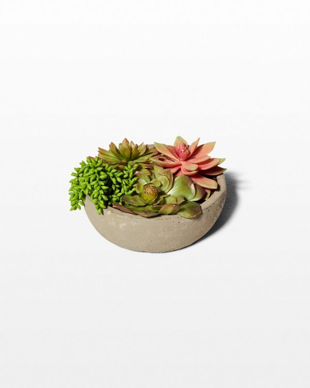 Front view of Feliz Faux Succulent Pot