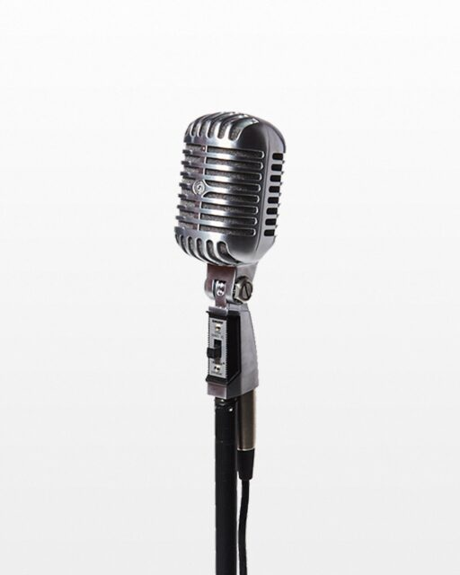 Front view of Holly Black Microphone with Cable and Stand
