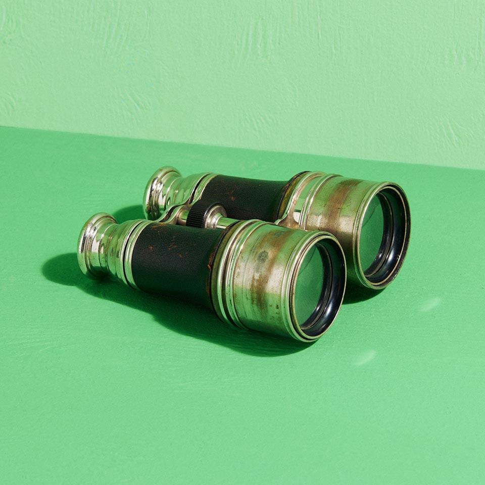 Category: Binoculars