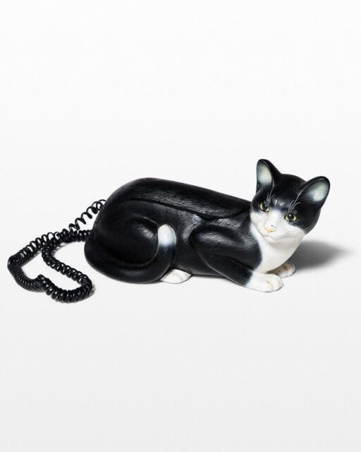 Front view of Kitty Telephone